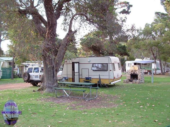 King River Palms Caravan Park