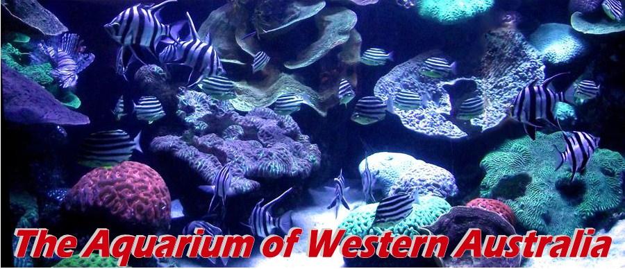 western australia sights