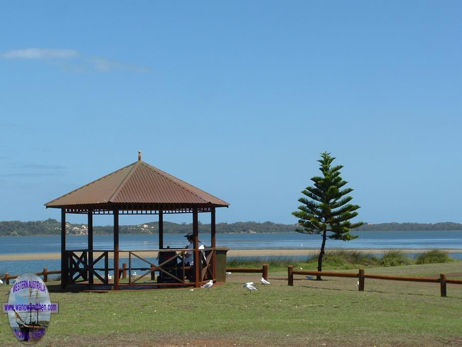 Australind (click here for a short video)